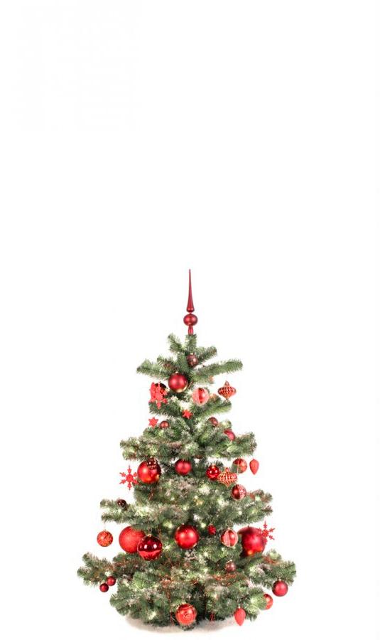 Basic Tree Warm Bordeaux 120cm-1429