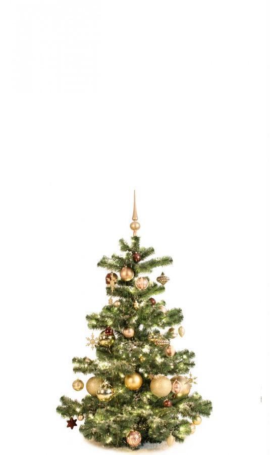 Basic Tree Golden Mocca 120cm-1444