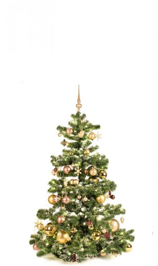 Basic Tree Golden Mocca 150cm-1443