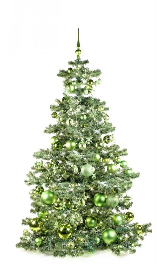 Basic Tree Refreshing Green 210cm-1436